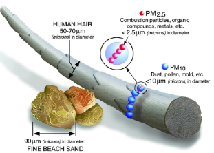 What is the PM2.5?